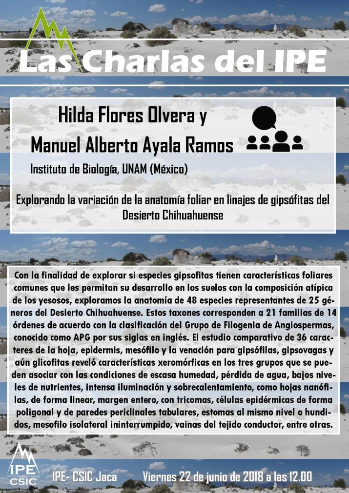 20180622_Hilda y Manuel_resumen
